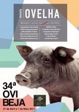 Revista Ovelha 2017
